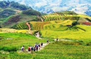 The vogue for homestay tourism in Sa Pa